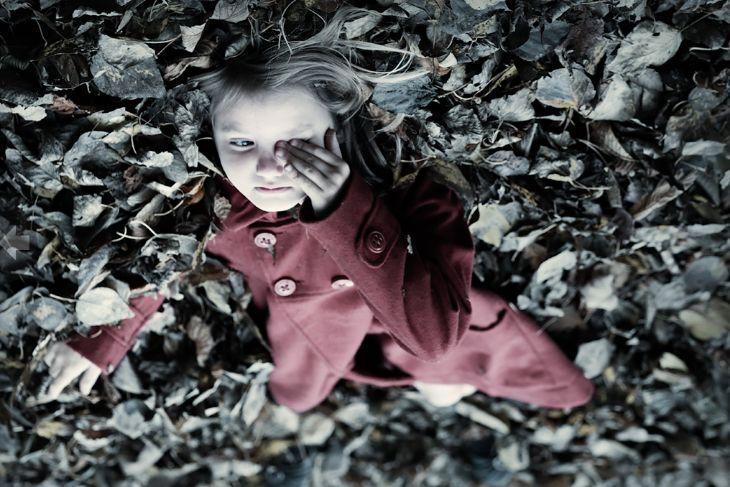 Chromasia - Photography - Leaves