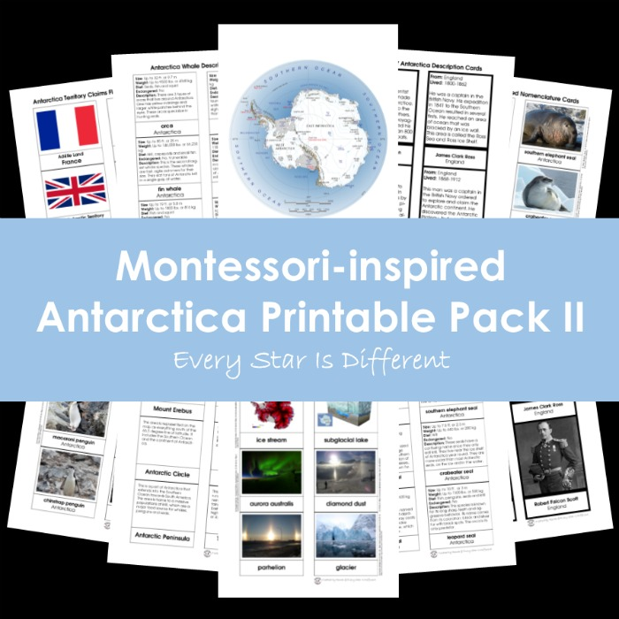 Montessori-inspired Antarctica Printable Pack II
