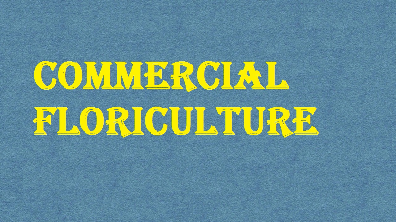 Commercial Floriculture ICAR Ecourse Free PDF Book Download e krishi shiksha