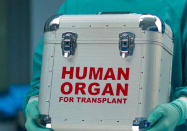 Δώρο Ζωής για 6 συνανθρώπους μας χάρισε με το θάνατό της 36χρονη δότρια οργάνων