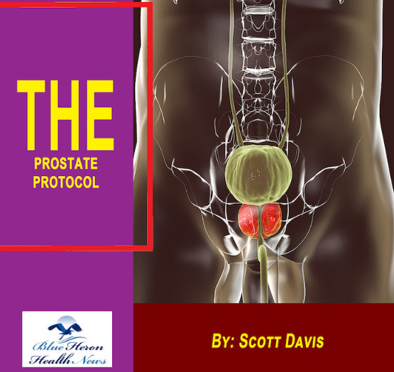 The Prostate Protocol review, The Prostate Protocol reviews, The Prostate Protocol SCOTT DAVIS, The Prostate Protocol pdf, The Prostate Protocol book, The Prostate Protocol program,