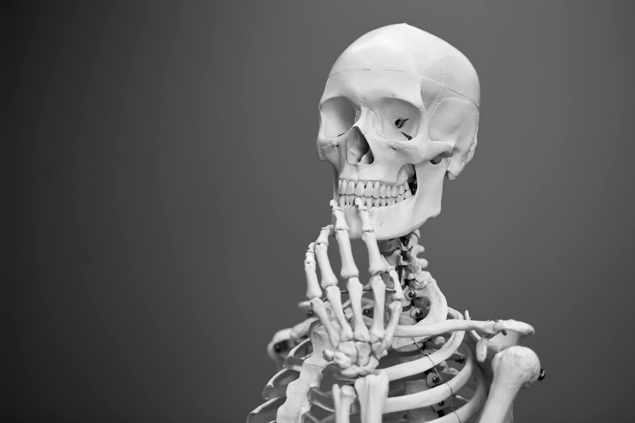 skeleton, scarcity mindset, sbc, sexperts, community, getting clients,