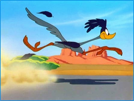 road runner randommusings.filminspector.com