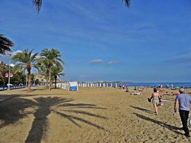 palmy na plaży w Hiszpanii Alicante