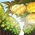 3 lý do khiến Reef Finance, Bridge Mutual và Morpheus Network tăng trưởng