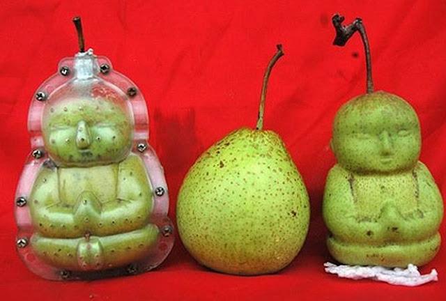 как выращивать фрукты необычной формы,