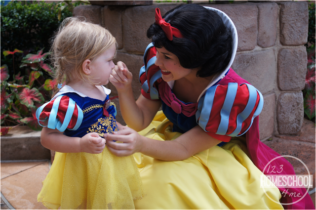 tips for meeting princesses at walt disney world
