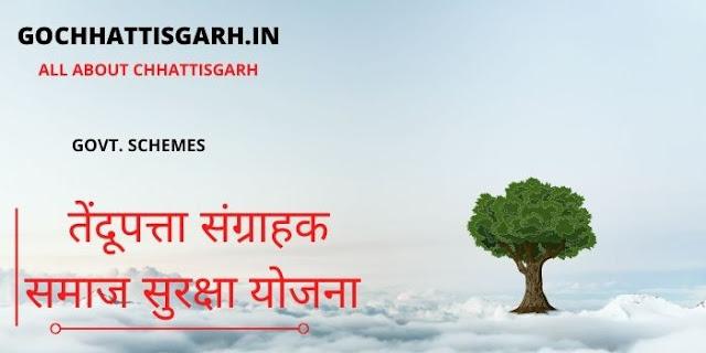 cg tendupatta sangrahak samaj yojna chhattisgarh 2020