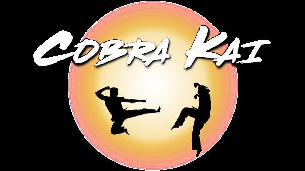 Cobra Kai Season 3 Dual Audio Hindi 720p HDRip