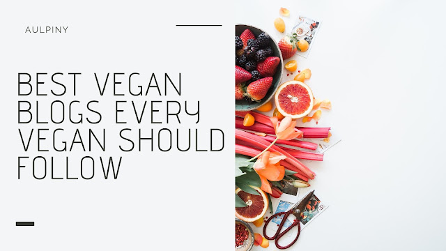 Best Vegan Blogs Every Vegan Should Follow