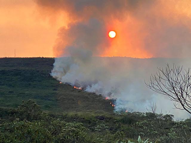 O combate na Chapada conta com cinco aviões fazendo o lançamento de água diretamente no fogo (Foto: Divulgação/Dmitri de Igatu)