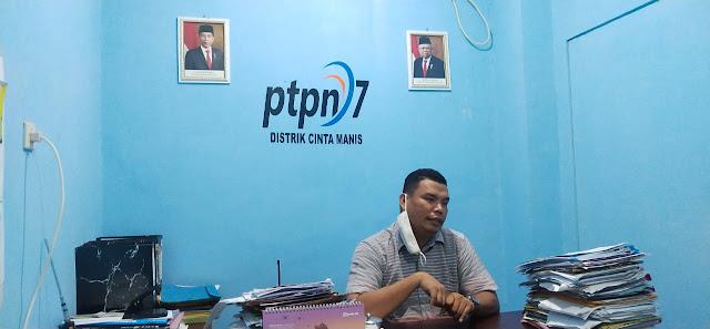Luncurkan Gula Kemasan 1 Kg,  PTPN 7 Rambah Pasar Ritel
