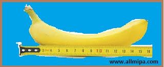 pengukuran, salah mutlak (allmipa.com)