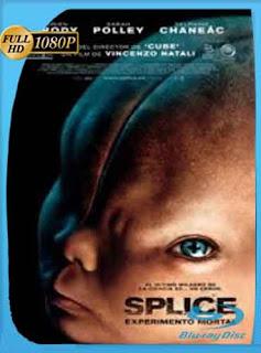 Splice: Experimento Mortal  2010 HD [1080p] Latino [Mega] dizonHD