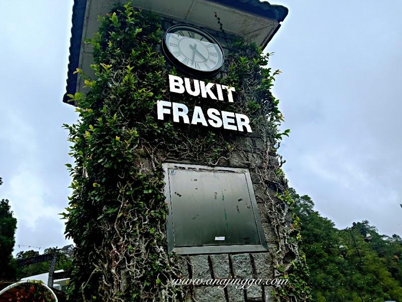Apa yang menarik di Bukit Fraser, Pahang