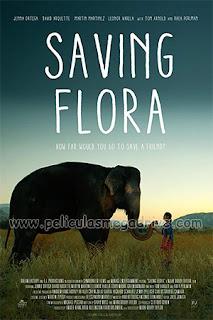 Saving Flora (2018) [Latino-Ingles] [Hazroah]