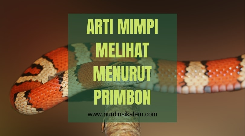 Arti mimpi melihat ular menurut primbon