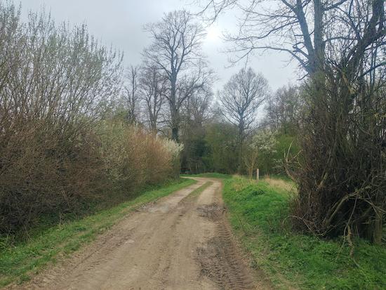 Wakeley bridleway 7 approaching Wakeley spring