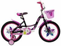 Sepeda Anak Wimcycle Glitter 18 Inci