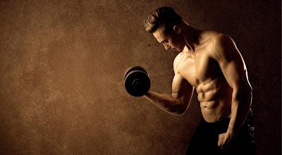 le migliori schede online bodybuilding di miletto