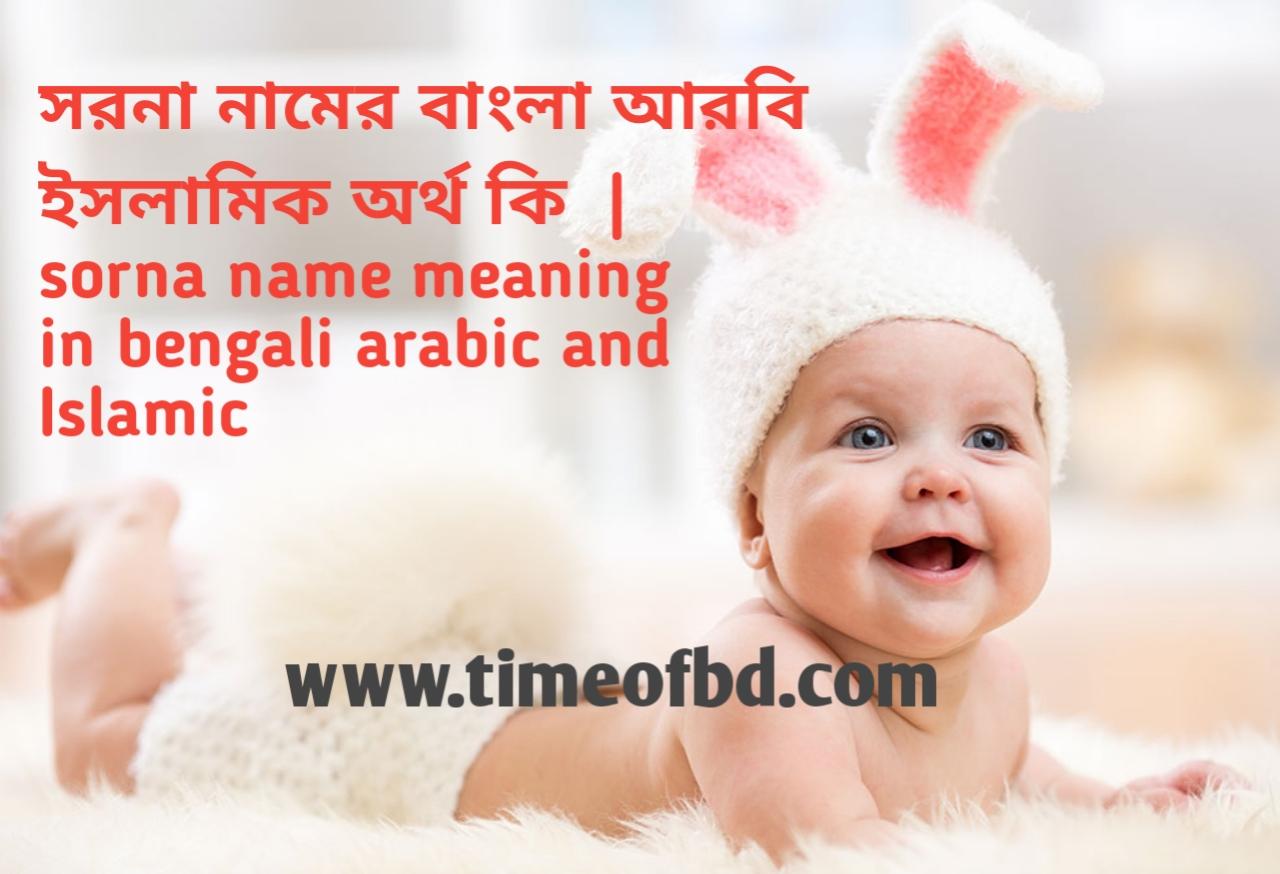সরনা নামের অর্থ কী, সরনা নামের বাংলা অর্থ কি, সরনা নামের ইসলামিক অর্থ কি,sorna name meaning in bengali