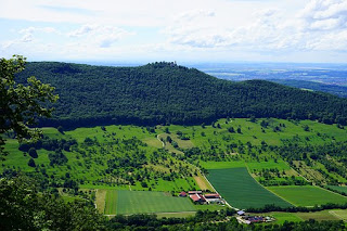 Multi-use Forest Management initiatives in the Community Forests