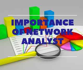 Importance of Network Analyst 2021