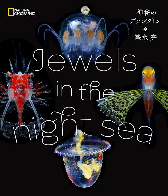 峯水亮写真集 Jewels in the night sea  神秘のプランクトン