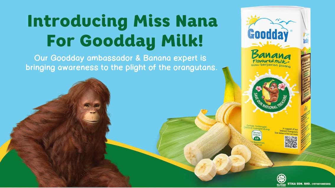Goodday Milk Embarks on a Mission to create awareness and educate Malaysians  towards the preservation of Borneon orangutans