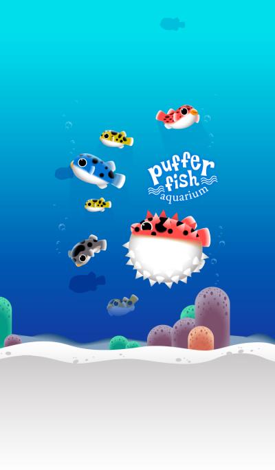 Puffer Fish Aquarium