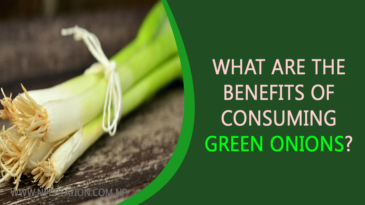 What are the benefits of consuming green onions?