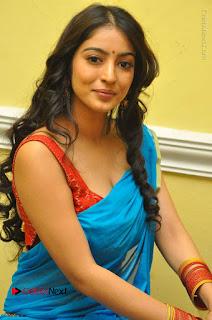 Telugu Actress Vaibhavi Stills in Blue Saree at Www.Meena Bazaar Movie Opening  0062.JPG
