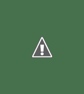 independence day bangla wish