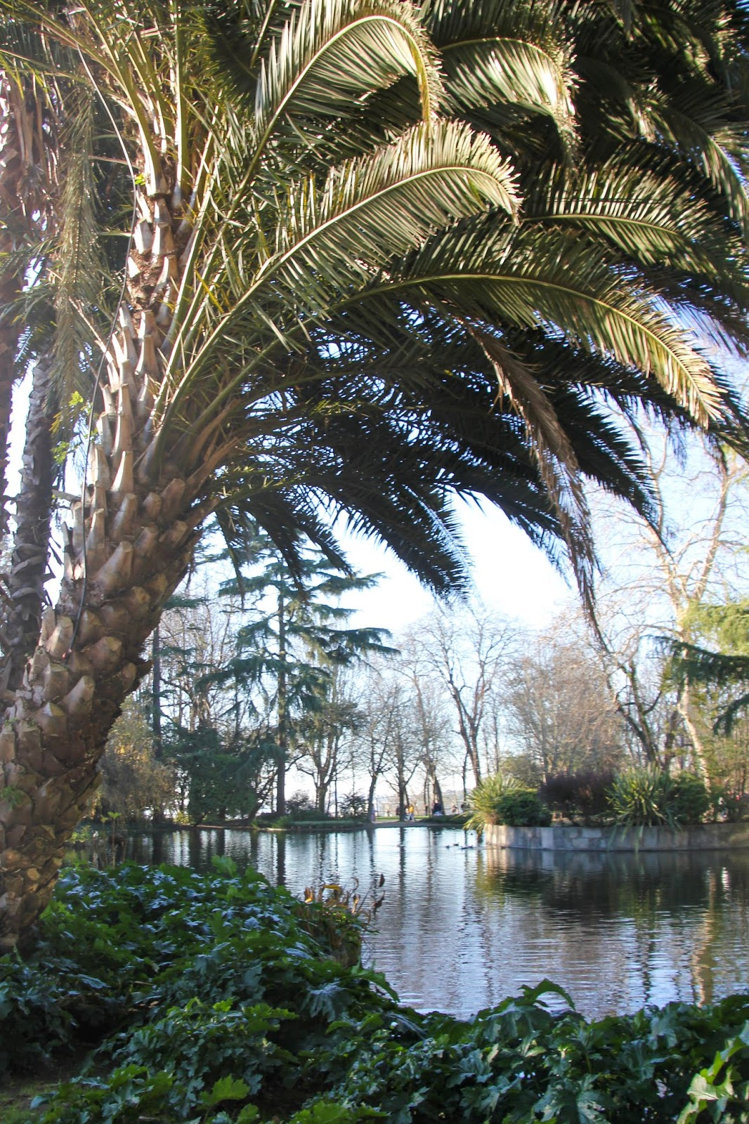 Jardin Palacio de Cristal