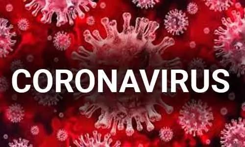 कोरोना वायरस में ये है आयूर्वेदिक घरेलू उपाय।।