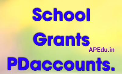 School Grants PDaccounts.