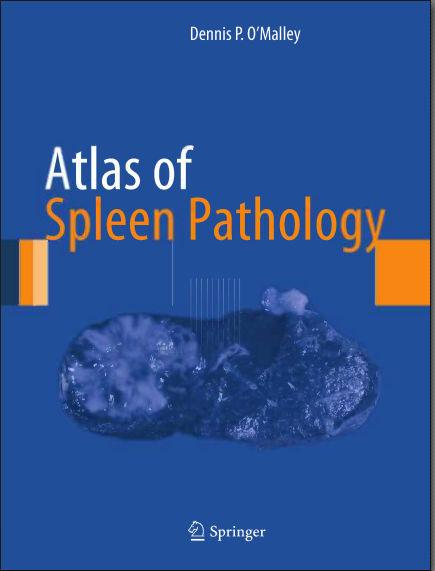 Atlas of Spleen Pathology (2013) [PDF]