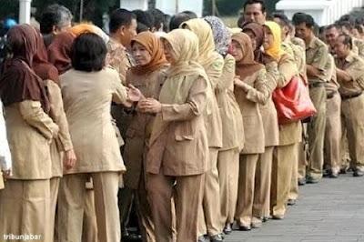 295 Ribu Guru Pensiun, Peluang Honorer jadi PNS