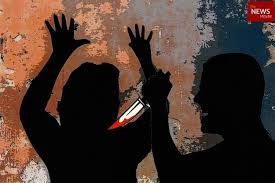 Delhi Double Murder: Double Murder after Road Rage,  Delhi Double Murder: Double Murder after Road Rage, CCTV Tragedy