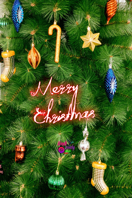 Merry Christmas Wishing Images