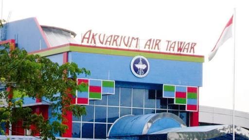 Wisata Aquarium Air Tawar TMII Jakarta
