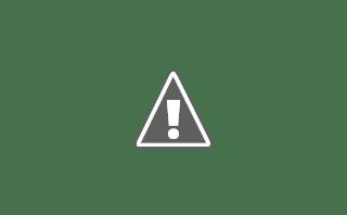 Fotografía de una orquídea blanca