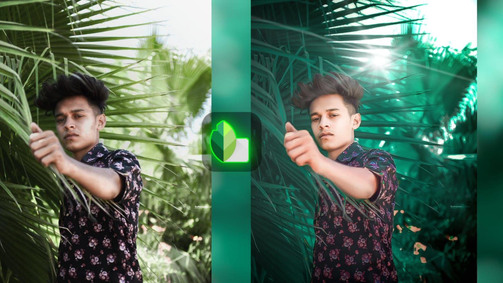 Lightroom Photo editing