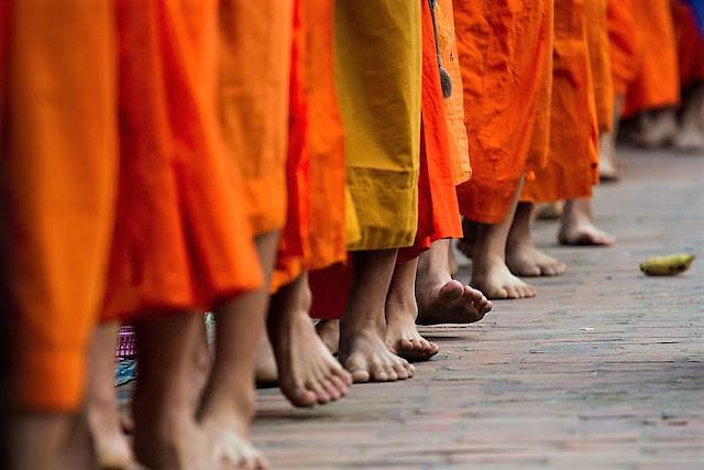 alms ceremony luang prabang laos