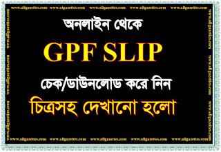 আপনার জিপিএফ ব্যালেন্স অনলাইন থেকে জেনে নিন  |  How to check GPF balance online?