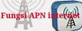 Fungsi APN Operator selular