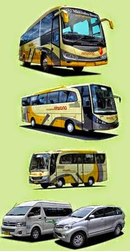 Micro Bus Pariwisata Nirwana