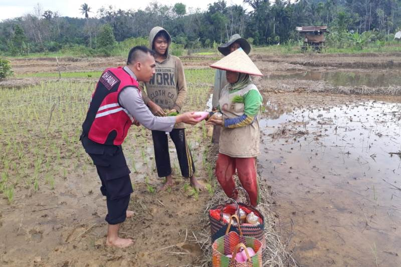 Yusron Pandiangan Bagikan Bubur dan Sirup Kelapa Muda Gratis Kepada Para Petani
