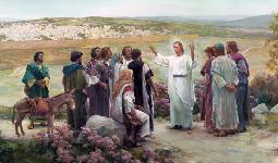 Cantos missa 6º Domingo Comum