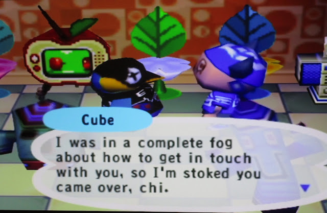 Animal Crossing GameCube Cube penguin dialogue complete fog get in touch house